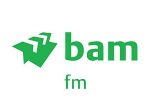 baachu-rain-customer-logos-bam